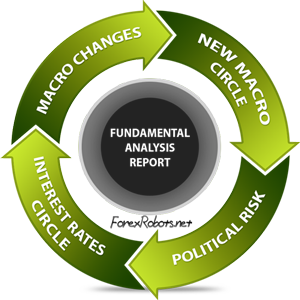 Fundamental traders weight the market dynamics of a basket of financial assets and analyze all economic releases and other relevant information that may affect them.